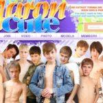 Aaroncute By SMS