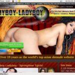 Ladyboyladyboy Films