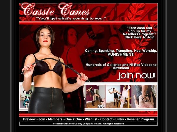 Cassie Canes Hub