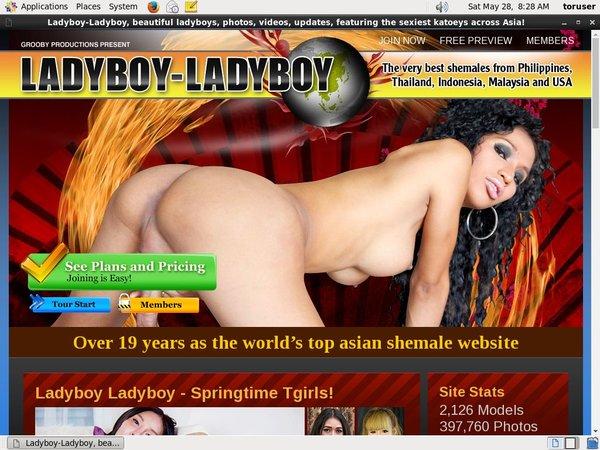 Ladyboy Ladyboy Sing Up